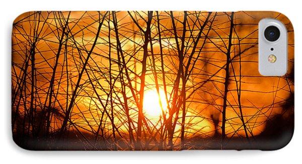 Sunset Through The Brush IPhone Case