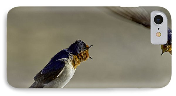 Swallow Fight IPhone Case