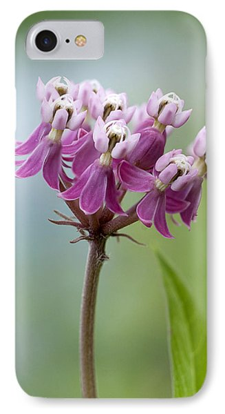 Swamp Milkweed IPhone Case