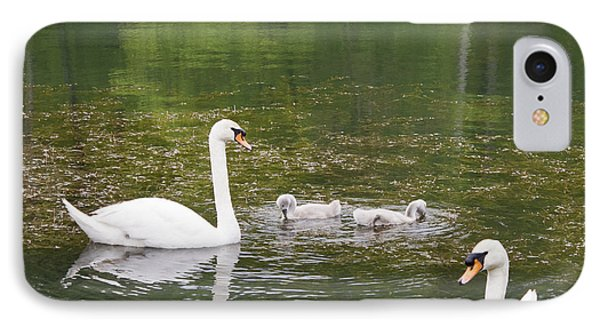 Swan Family Squared IPhone Case