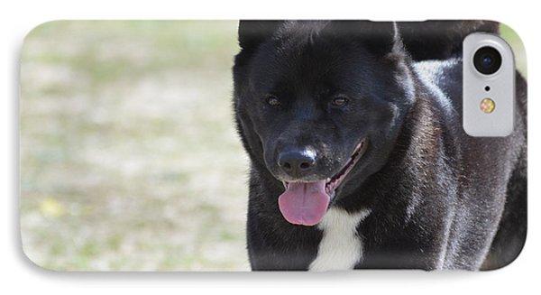 Sweet Akita Dog IPhone Case