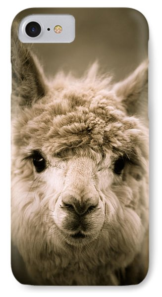 Sweet Alpaca IPhone Case