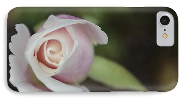 Sweet Pink Rose IPhone Case