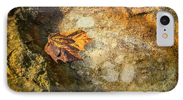Sycamore Leaf In Ice IPhone Case
