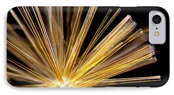 Synedra Diatom Group IPhone Case