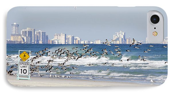 Terns On The Move IPhone Case
