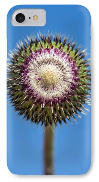 Texas Thistle Bud IPhone Case