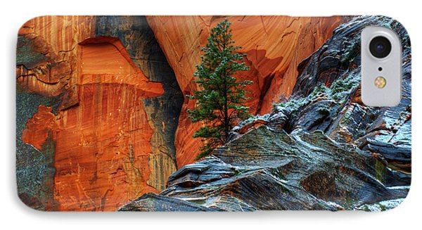 The Beauty Of Sandstone Zion IPhone Case