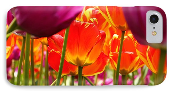 The Drooping Tulip IPhone Case