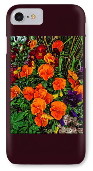 The Fall Pansies IPhone Case