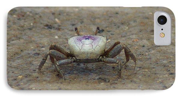 The Fiddler Crab On Hilton Head Island IPhone Case