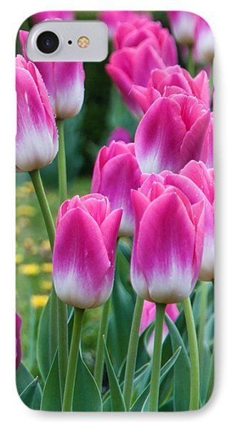 The Flower Magnificence IPhone Case