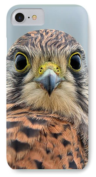 The Kestrel Face To Face IPhone Case