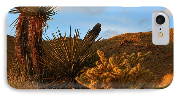 The Living Desert In Winter IPhone Case