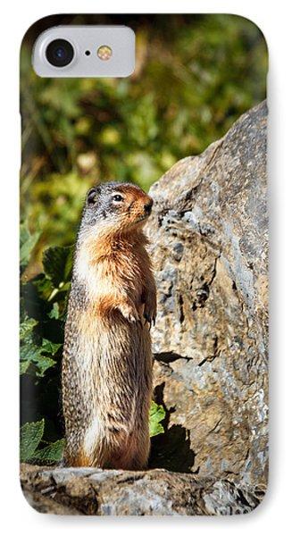 The Marmot IPhone Case