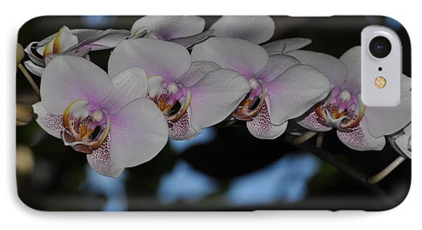 The Orchid Garden IPhone Case