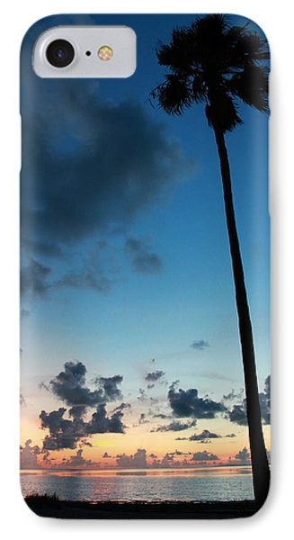 The Palm Majestic Sunset Beach Tarpon Springs Florida IPhone Case