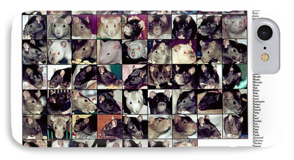 The Rat Retreat Yearbook IPhone Case