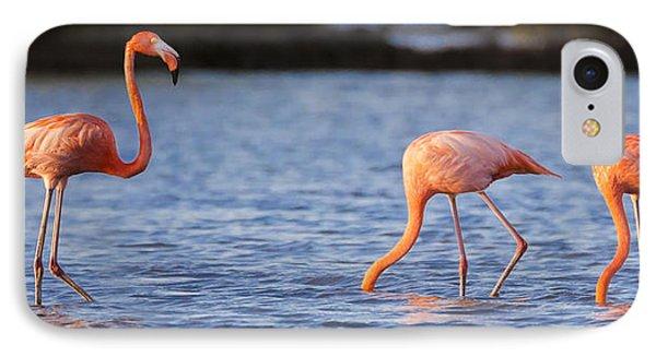 The Three Flamingos IPhone Case