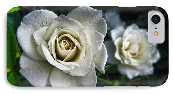 The White Rose IPhone Case