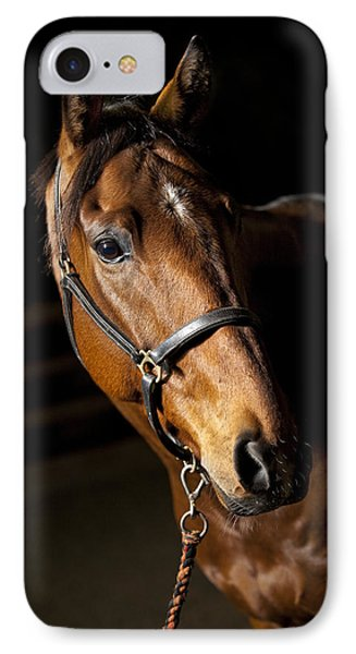 Beauty In Nature iPhone 8 Case - Thoroughbred Race Horse by Samuel Whitton