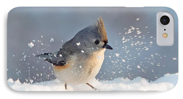 Titmouse Fun In The Snow IPhone Case