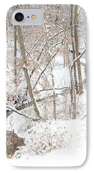 Tranquil Winters Creek IPhone Case