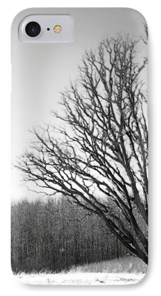 Tree In Winter 2 IPhone Case