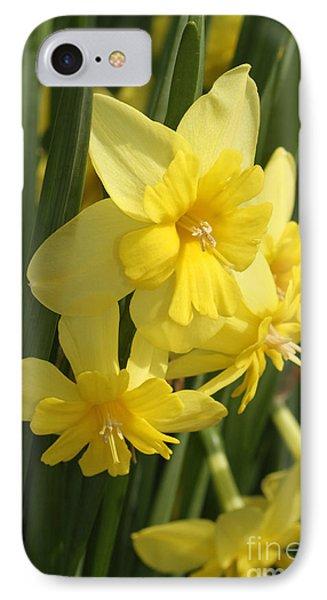 Tripartite Daffodil IPhone Case