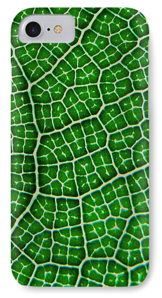 Tropical Fig Leaf Veins IPhone Case