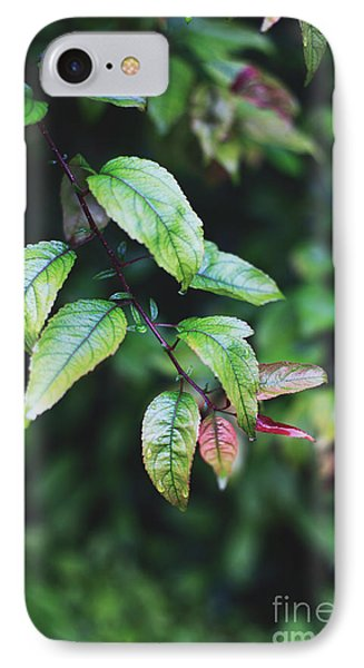 Tropical Forest IPhone Case
