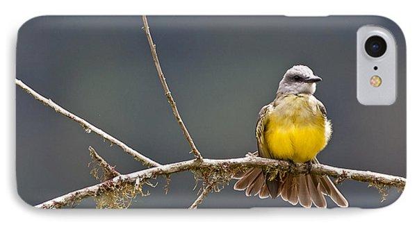 Tropical Kingbird IPhone Case