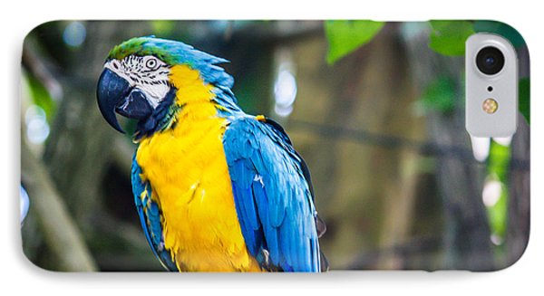 Tropical Parrot IPhone Case