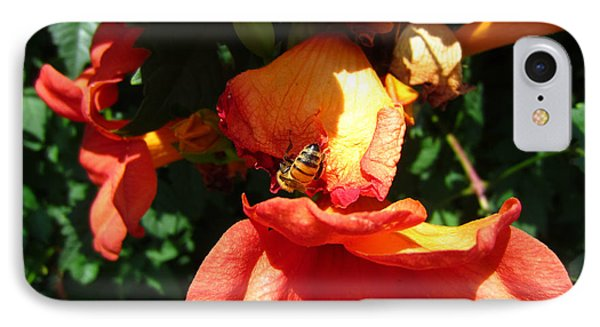 Trumpet Flower Orange And Visiting Bee IPhone Case