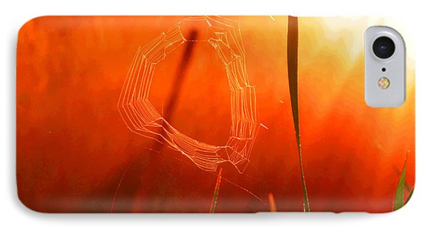 The Spider's Web In Golden Sunlight IPhone Case