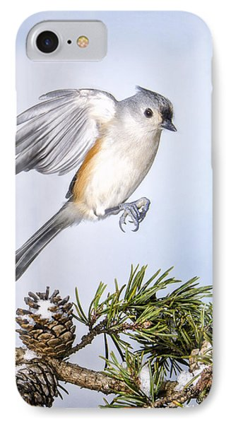 Tufted Titmouse In Flight IPhone Case