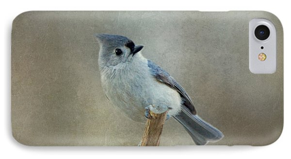 Tufted Titmouse Watching IPhone Case