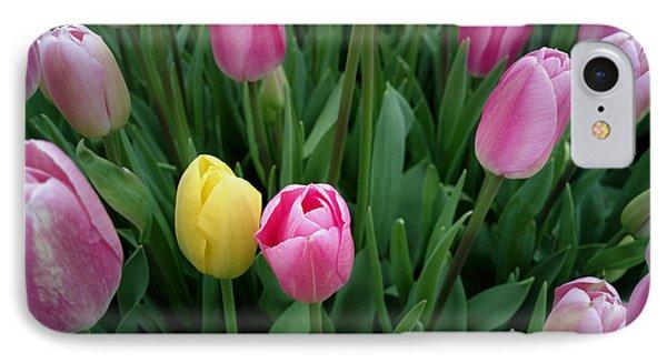 Tulip Festival - 36  IPhone Case