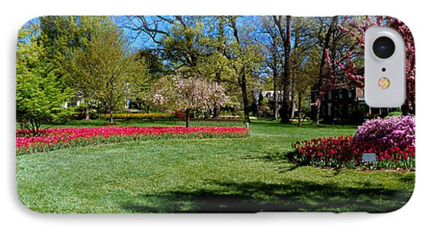 Tulips And Cherry Trees In A Garden IPhone Case