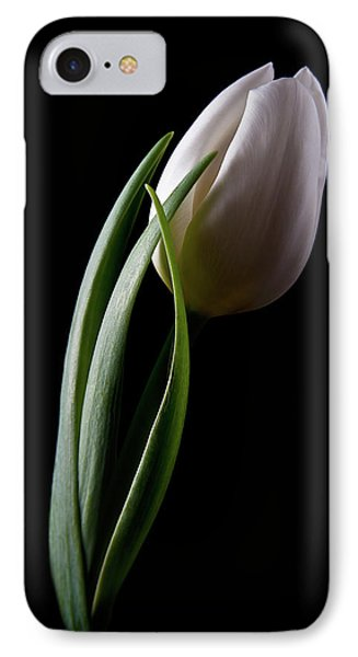 Tulip iPhone 8 Case - Tulips IIi by Tom Mc Nemar