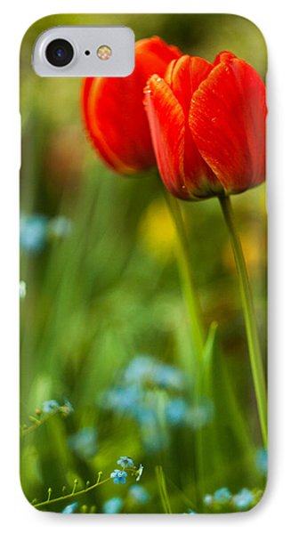 Tulips In Garden IPhone Case