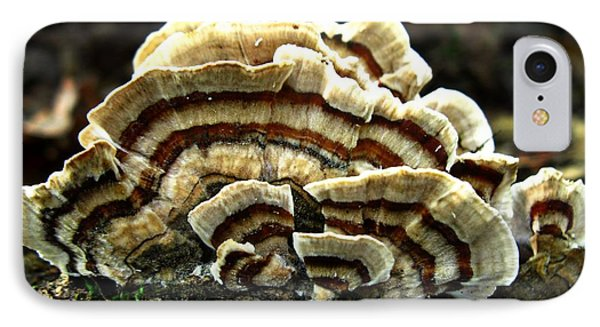 Turkey Tail Fungi IPhone Case