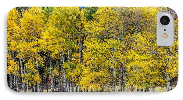 Turning Of The Aspens IPhone Case