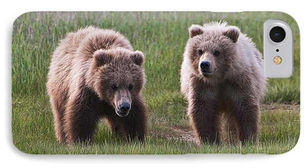 Twin Bear Cubs IPhone Case