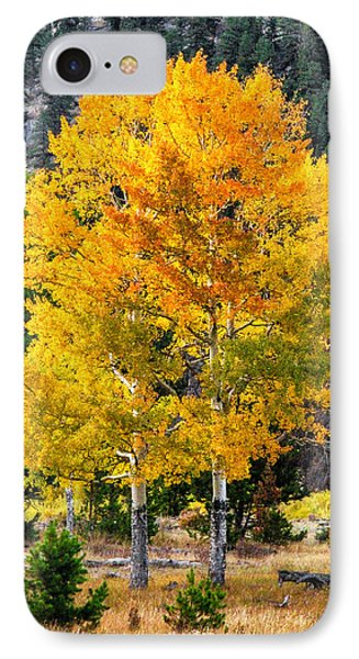 Twin Fall Trees IPhone Case