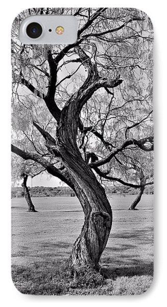 Twisted Tree IPhone Case