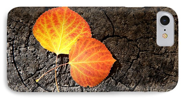 Two Aspen Leaves IPhone Case