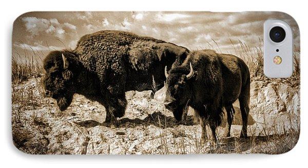 Two Buffalo IPhone Case