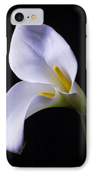Lily iPhone 8 Case - Two In Love by Garry Gay