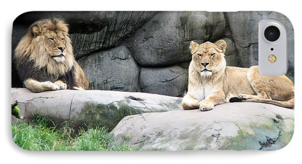 Two Tranquil Lions IPhone Case